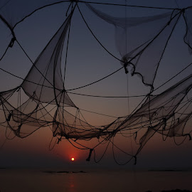 Life by Vivek Raut - Artistic Objects Clothing & Accessories ( entangle, life, sunset, lifestyle, beach, beauty,  )