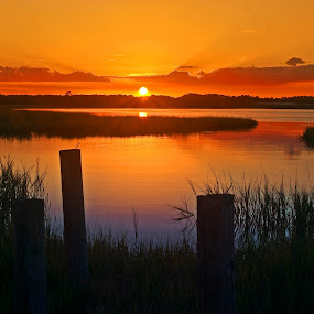 Big Talbot Sunset by Jonathan Wheeler - Landscapes Sunsets & Sunrises ( northeast florida, florida, florida state parks, sunrise, salt marsh )