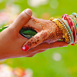 Indian Wedding by Michael Mistry - People Couples ( wedding photography, hands, wedding day, sunny, weddings, wedding, india, colorfull, indian wedding, bangle )