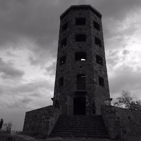 Storm watchers by Alison Gimpel - Black & White Buildings & Architecture ( enger tower, duluth minnesota, landscape )
