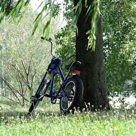bike waiting by Dubravka Penzić - Transportation Bicycles (  )