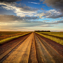The Road by Paul Stadnyk - Landscapes Prairies, Meadows & Fields ( sky, summer, road, landscape, prairie )