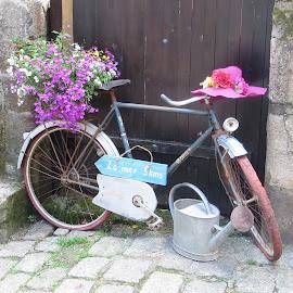 by Hannah Warner - Transportation Bicycles