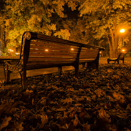Yellow benches and a man with a flag by Eugene Shutoff - City,  Street & Park  City Parks ( orange, park, bench, kiev, green, street, leaf, yellow, leaves, fire, red, kyiv, ukraine, tree, autumn, fall, night, light, public, furniture, object )