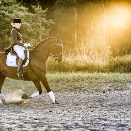 Dressage by Erik Kunddahl - Sports & Fitness Other Sports ( equine, equipage, riding, horse, nikon )
