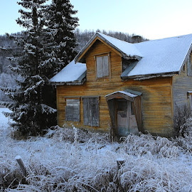 Abandoned... by Unni Lorentsen - Buildings & Architecture Homes ( grass, snow, frost, trees, fences, house )