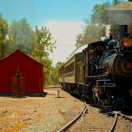 Old #3 by John Slot - Transportation Trains ( old trains, ca. state park, old #3; jamestown;, trains,  )