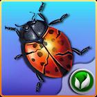 Bug Smasher PRO icon