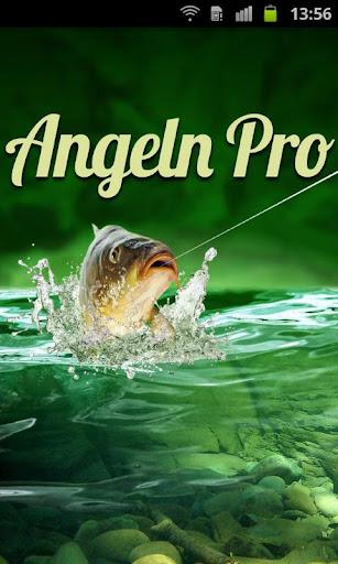 Angeln Pro