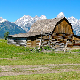 Barn with the Grand Tetons in the Background by MaryAnn Sei - Buildings & Architecture Public & Historical ( novice, barn, snow, landscape, tetons )