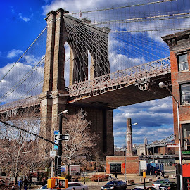 by Jose Figueiredo - Buildings & Architecture Bridges & Suspended Structures ( structure, bridge, brooklyn,  )