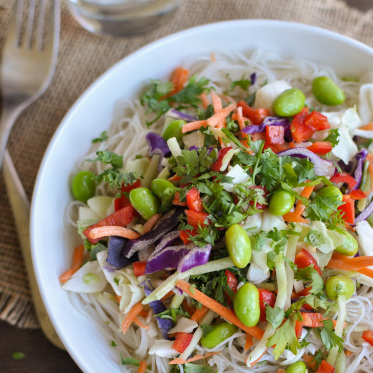 Asian Chicken Salad with Sesame Ginger Dressing Recipe | Yummly