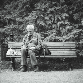Such is Life by Nemanja Stanisic - People Street & Candids ( old, life, park, bench, street, bw, grey, alone, man )