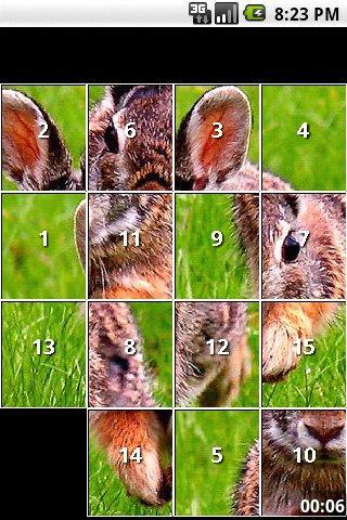 Rabbit Puzzles