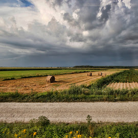 on the way to Osijek by Zoran Osijek - Landscapes Prairies, Meadows & Fields
