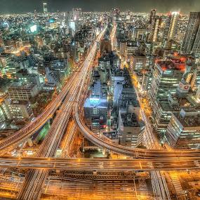Osaka highway by Ryusuke Komori - City,  Street & Park  Night ( japan, highway, osaka, night )