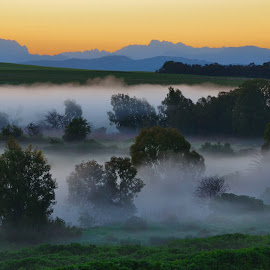 Misty horseshoe stream by Glenn Visser - Landscapes Prairies, Meadows & Fields ( hills, stream, farmland, misty, mist )