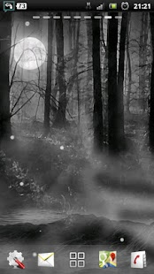 misty forest at night LWP - screenshot