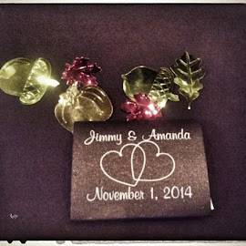 by Alena Hixon - Wedding Reception