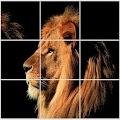 Animal Puzzles APK for Bluestacks