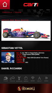 CAR F1 2014 - screenshot