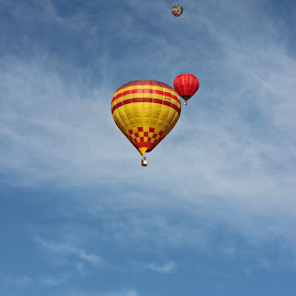 Hot Air Balloons by Dirk Luus - Transportation Other ( sky, fly, hot, air, balloons )
