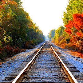 Ticket to no where by Jackie Smith - Landscapes Travel ( railroad tracks,  )