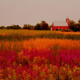 Country Church. by Steve Cooper - Landscapes Prairies, Meadows & Fields ( church, cloudy, quiet, hues, varied florals )