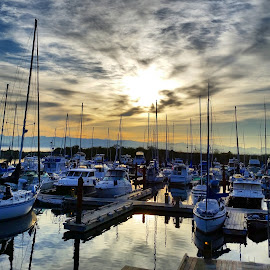 Marina by Jamie Wilson - Novices Only Objects & Still Life ( vancouver island, boats, sea, ocean, sunrise, marina, morning, boat )