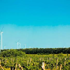 Windtakers 1 by Konstantin Kostadinov - Landscapes Prairies, Meadows & Fields