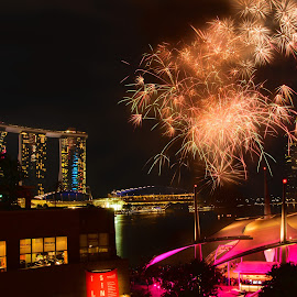 Fireworks Rehearsals by Tina Lim - City,  Street & Park  Skylines ( national day rehearsals, fireworks, marina bay sands, night, marina bay, esplanade, singapore,  )
