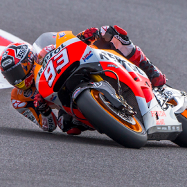 Elbow down by Kain Dear - Sports & Fitness Motorsports ( champion, motogp, bike, 93, elbow, racing, marquez, motorcycle, down, repsol )