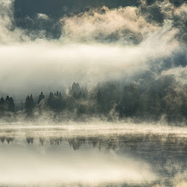 Morning Mist by Mihaela Jurca - Landscapes Travel ( mountain, winter, fog, lake, morning )