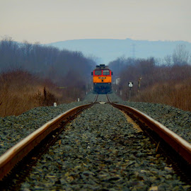 by Nenad Milic - Transportation Trains