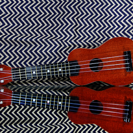 by Dipali S - Artistic Objects Musical Instruments ( ukelele, music, reflection, musical, guitar, instrument )