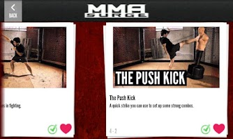 Screenshot of MMA Surge