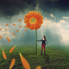 Big Wishes by Erfan Mirabedini - Digital Art Things ( #6d #canon #dramatic #dream #england #flower #girl #grass #iran #iranian #lady #light #manipulation #person #photomanipulation #photoshop #sky #small #surreal #wind )