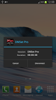 Screenshot of DNSet Pro