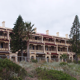 Beach Terraces by Pamela Howard - Buildings & Architecture Homes ( terrace, houses, grange, beach, pine trees, vegetation )