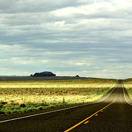 Long Long Road by Catherine  Koon - Landscapes Deserts (  )