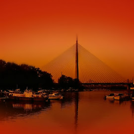 Reflection... by Dragana Vojinovic - Buildings & Architecture Bridges & Suspended Structures ( belgrade, sunset, bridges )