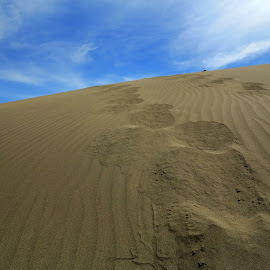 Sands by Gil Reis - Nature Up Close Sand ( sand, nature, places, travel, deserts )