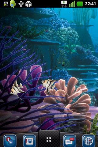 我的免費的個人水族館