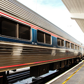 by Eduardo Vilaça - Transportation Trains ( red, blue, amtrak, miami, train )