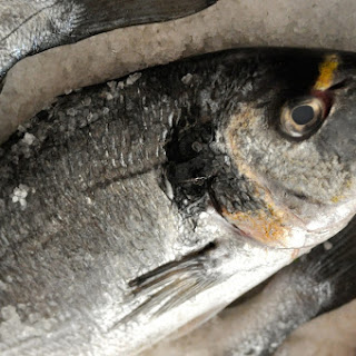 Whole Fish Baked In Sea Salt Crust