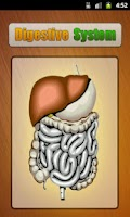 Screenshot of Human Digestive System