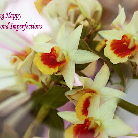 Being Happy by Norman Tan - Typography Captioned Photos ( abstrac, blooms, orchids, happy, vibrant, flowers, captioned )