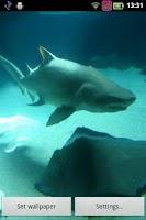 Screenshot of Shark's Waving Waters