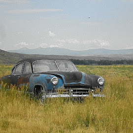 Blast from the Past by Verna Harris - Artistic Objects Other Objects ( field, car, vintage car, landscape, rust )