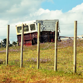 old rusty trailer by Kylie Jackson - Landscapes Prairies, Meadows & Fields (  )